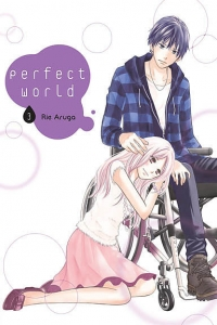 Perfect world 3